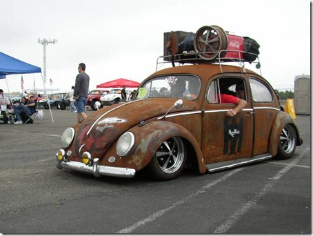 rat look beetle